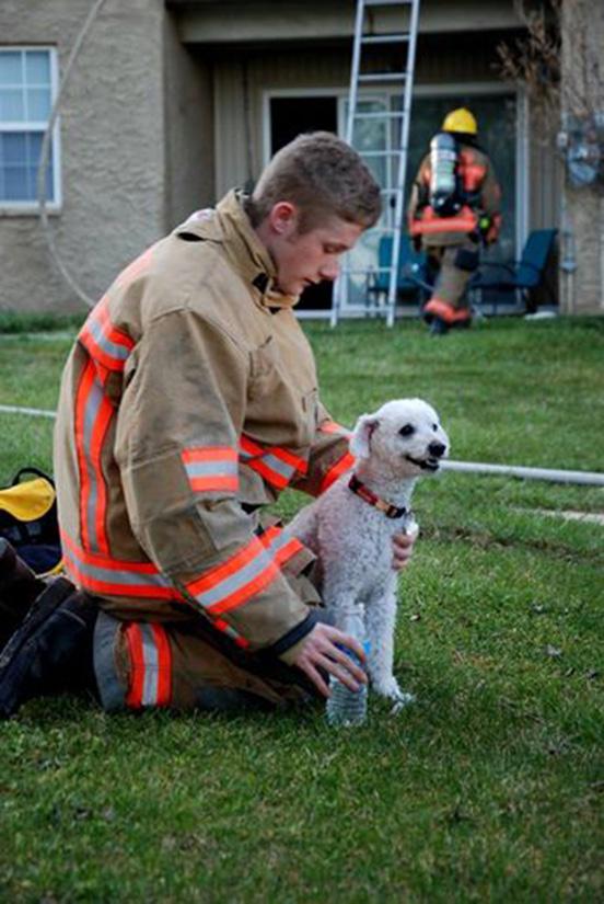 Puppy Rescue 1